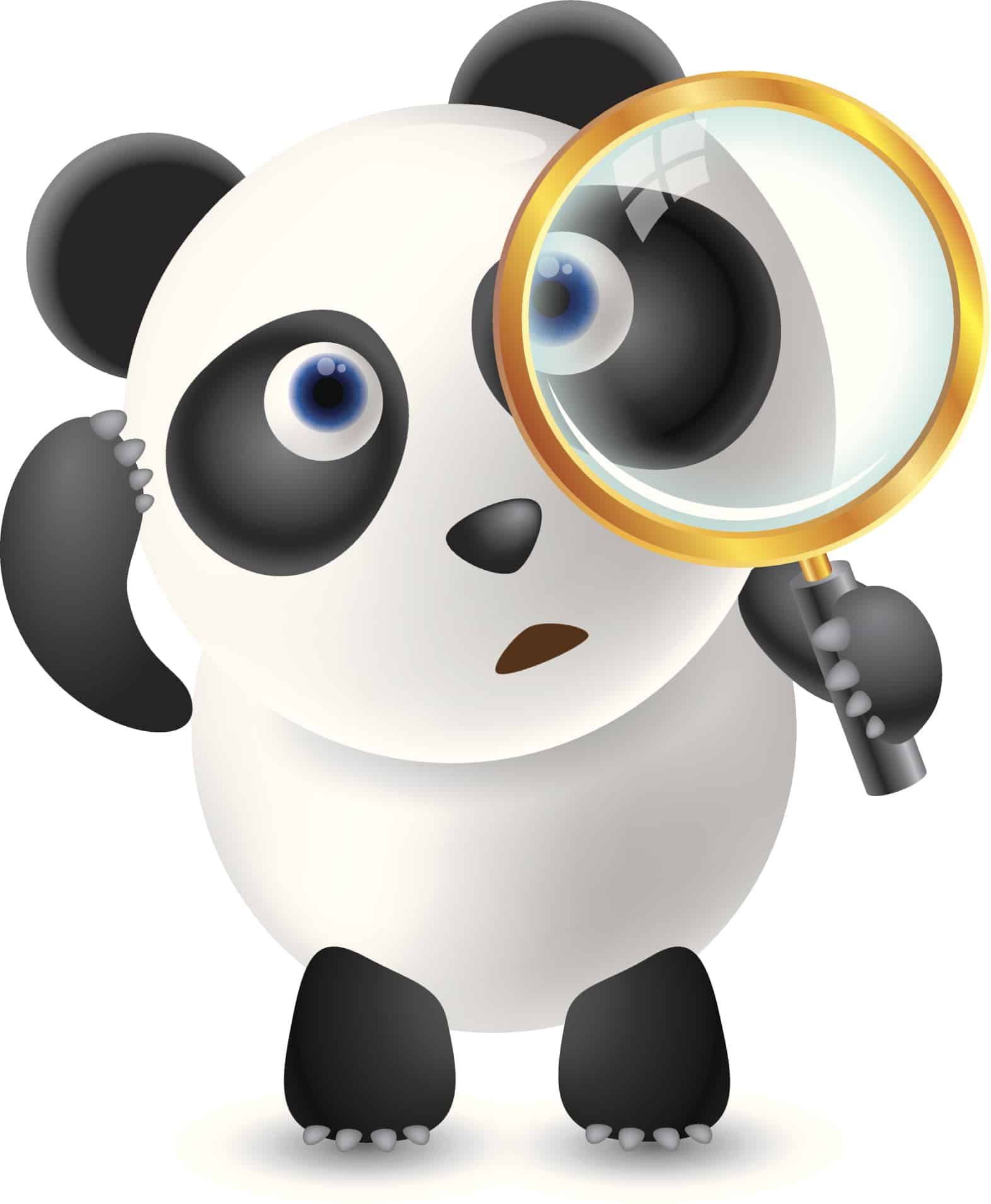 Panda 4.0 and What Does It Mean For Your Local Business Website